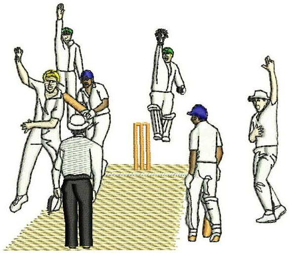 Cricket0006.jpg - large